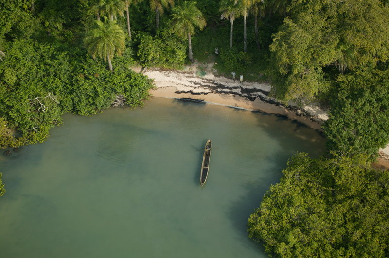 Wald und Wasser in Guinea-Bissau.